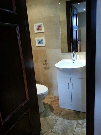 Hyde Park Suites : Baño
