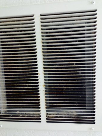 Extended Stay America - Minneapolis - Airport - Eagan - North : Vent in the bathroom