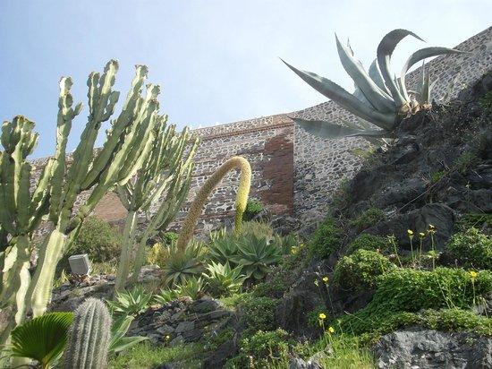 Parque Ornitologico Loro