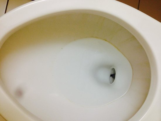 Extended Stay America - Minneapolis - Airport - Eagan - North: Toilet