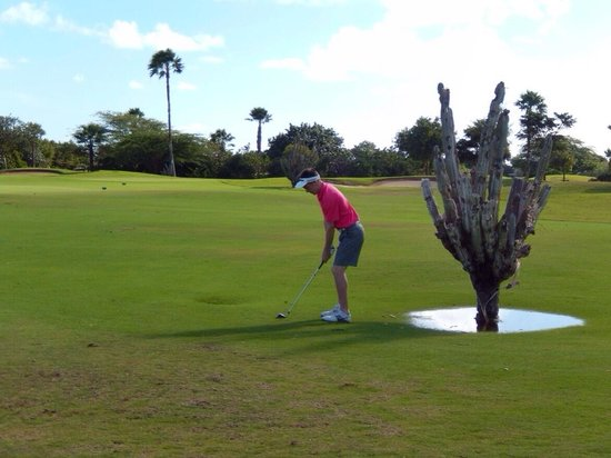 Links at Divi Aruba : Desert golf