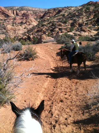 MH Cowboy - Day Tours: On the trail