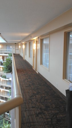 Embassy Suites by Hilton Birmingham: New corridor carpet
