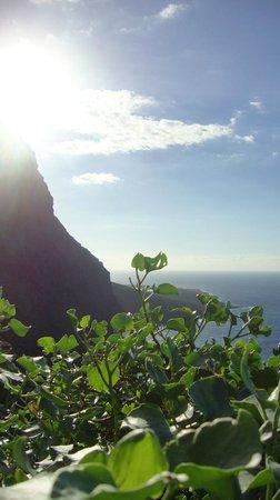 Atlantik Surf: Tenerife, incredible landscapes