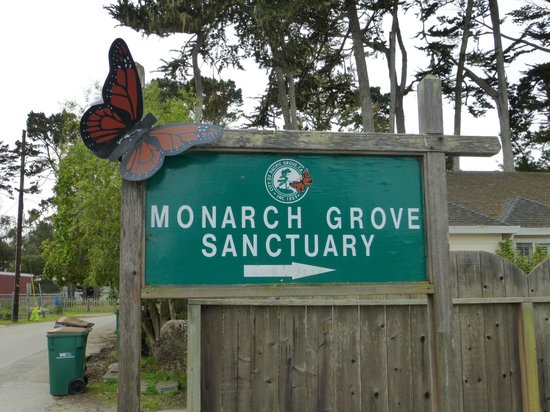 Monarch Grove Sanctuary : Entrance sign