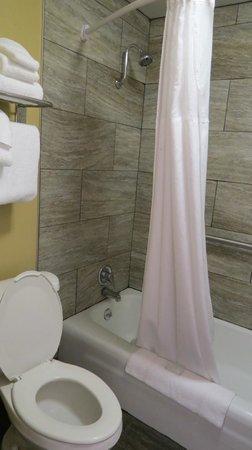 Best Western Plus Austin City Hotel: Bathroom