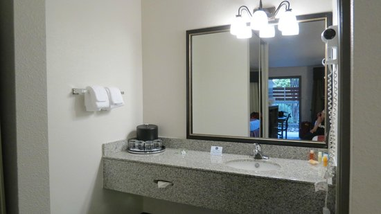 Best Western Plus Austin City Hotel: Sink area