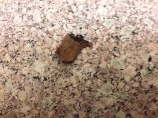 Howard Johnson Express Inn Bronx: Obliviously didn't clean floors
