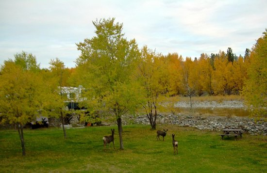 Rivers Edge RV Park & Campground