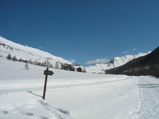 Château des Magnans : piste de ski fond