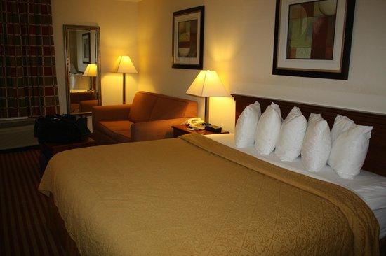 Quality Inn Madison : King bed