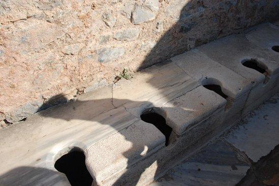 Public Latrine at Ephesus