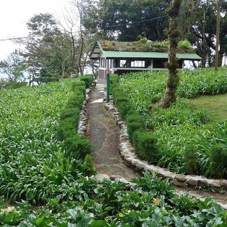 Selva Negra Mountain Resort: Cabin #10