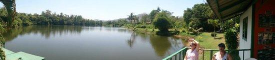 Jungle Bungy Jump: Lake