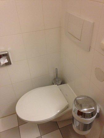 Germania Hotel: туалет