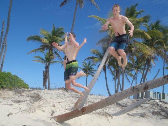 Bahama Boat Tours: Gilligan's Island