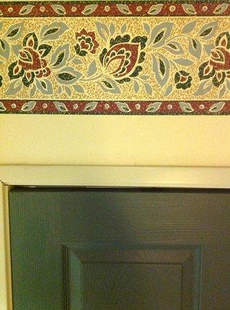 Country Inn & Suites By Carlson, Grand Rapids Airport : Gap in door