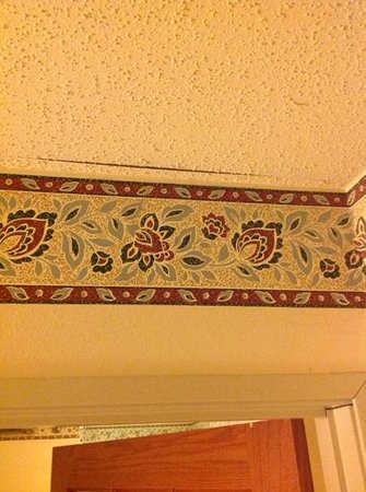 Country Inn & Suites By Carlson, Grand Rapids Airport : Ceiling Problem 1