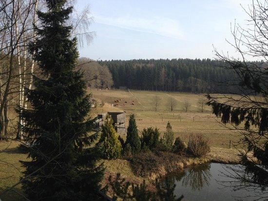 Sayda, Tyskland: Umgebung
