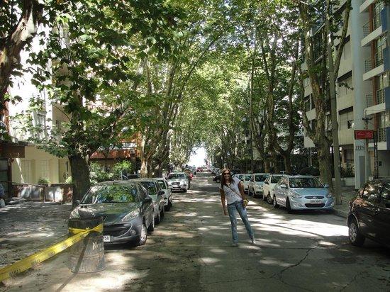 Massini Suites: Rua do hotel