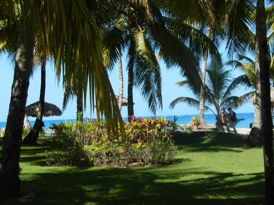 Grand Bahia Principe San Juan: vista de la playa desde mi habitaciòn
