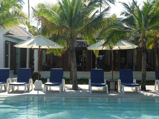 Samui Palm Beach Resort & Hotel: Liegen am Pool