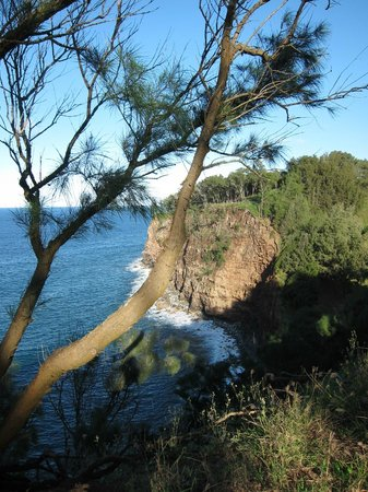 Hawaii Island Retreat at Ahu Pohaku Ho`omaluhia: View from the edge of the property