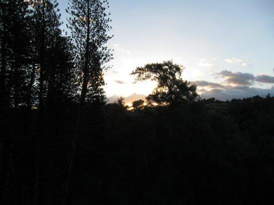 Hawaii Island Retreat at Ahu Pohaku Ho`omaluhia: Dawn from our room