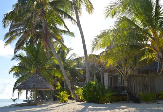 Little Polynesian Resort : Our bungalow from the beach