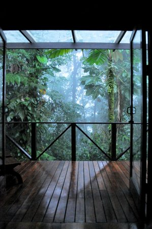 Rio Celeste Hideaway Hotel : Dawn and the jungle is amazing!