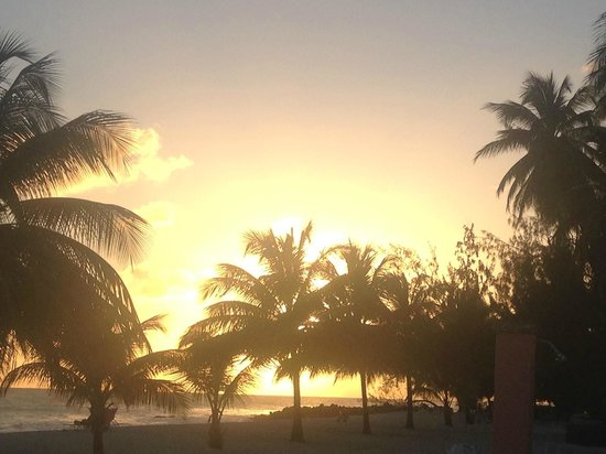 Southern Palms: Sunset from the bar