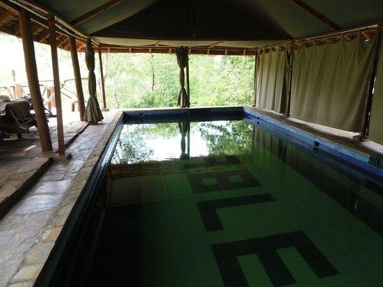Sable Mountain Lodge: La piscine d'eau de source, un rafraîchissement bienvenu.