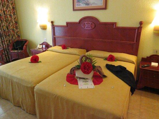 Hotel Riu Playacar: Room