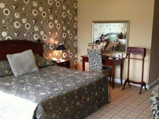 Lake Hotel: Room 417 desk