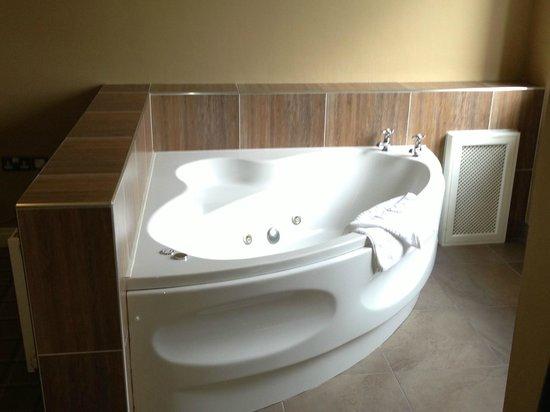 Lake Hotel: Room 417 Bath in room