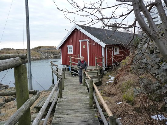 Svinoya Rorbuer - BaseCamp Lofoten: Our Cabin