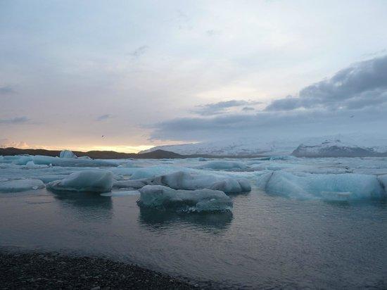Gletscherlagune Jökulsárlón: Jokulsarlon
