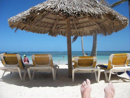 Catalonia Bavaro Beach, Casino & Golf Resort: Beach shade and chairs