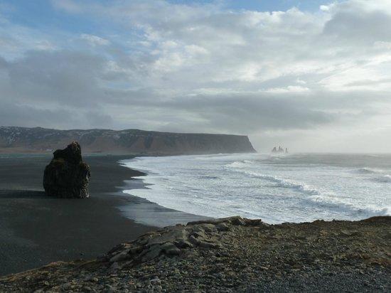 Dyrholaey: Huge waves