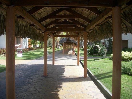 Catalonia Bavaro Beach, Casino & Golf Resort: Walkways