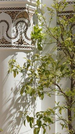 Zamzam Riad: Dachterrasse