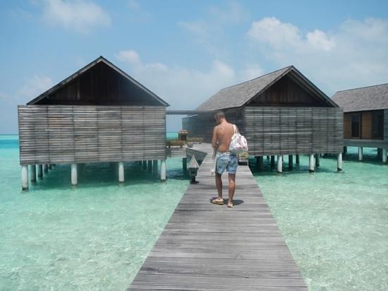 Gangehi Island Resort : overwater dall'esterno