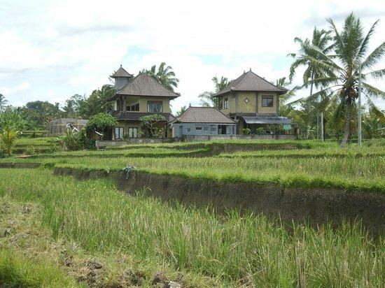 Dukuh Village Homestay : Dukuh homestay