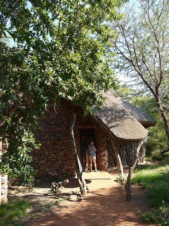 Sanctuary Makanyane Safari Lodge : The suite
