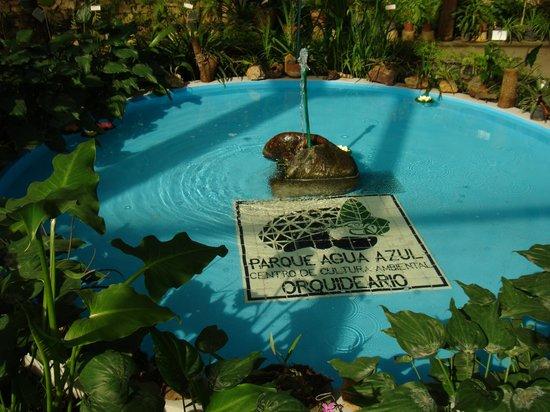Mariposario Picture Of Parque Agua Azul Guadalajara Tripadvisor
