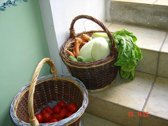 Maison d'Angeline: des légumes bio du potager