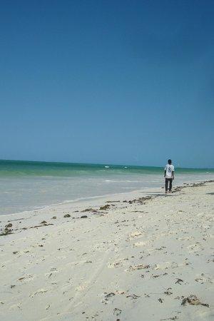 Mustapha's Place: Beach