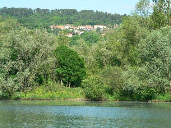Arry, Francia: vue du village depuis la moselle