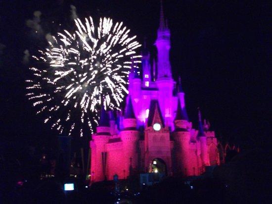 Magic Kingdom : Fireworks