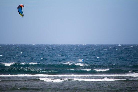 Kingfisher Resort: The spot